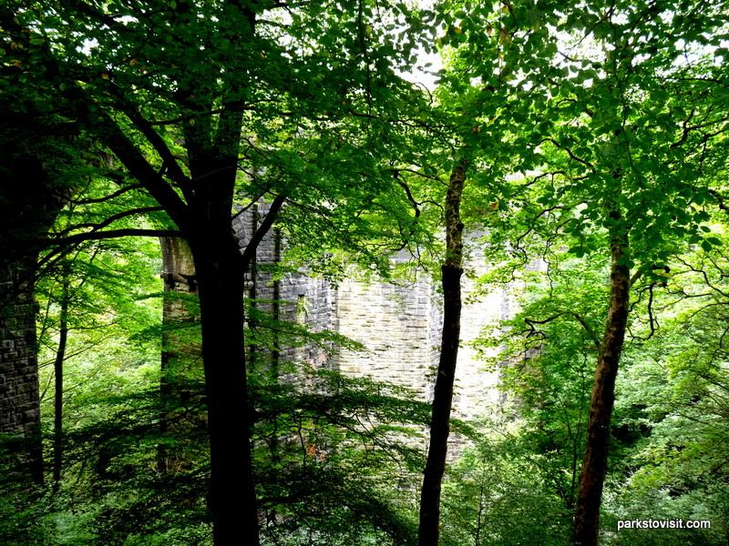 Healey Dell Nature Reserve_Rochdale_09_2021 (61)
