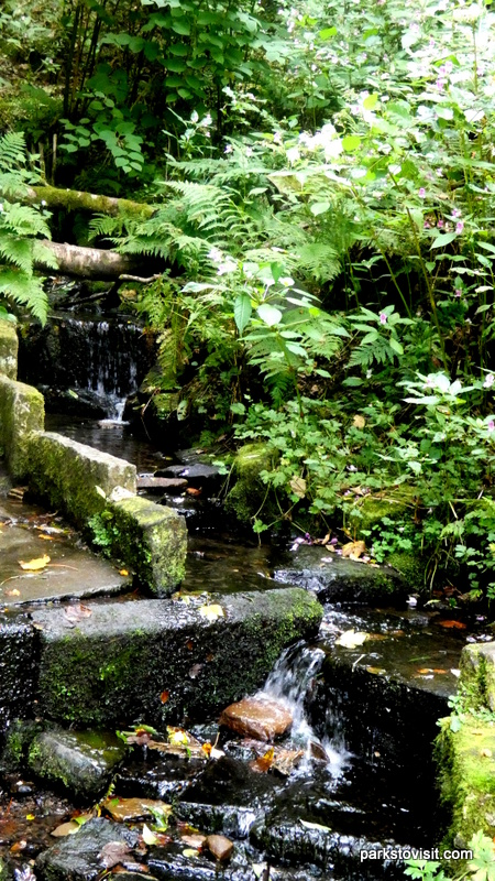Healey Dell Nature Reserve_Rochdale_09_2021 (7)