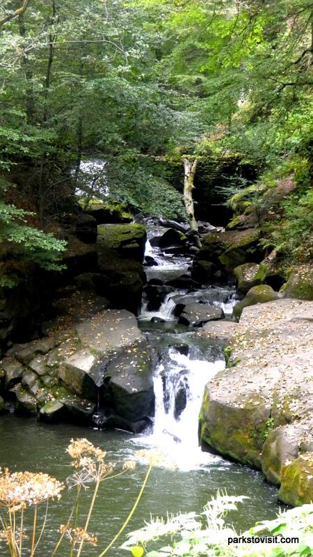 Healey Dell Nature Reserve_Rochdale_09_2021 (8)
