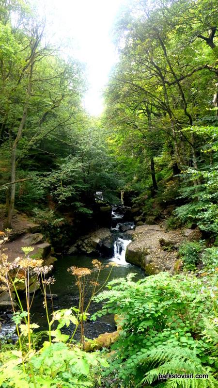 Healey Dell Nature Reserve_Rochdale_09_2021 (9)